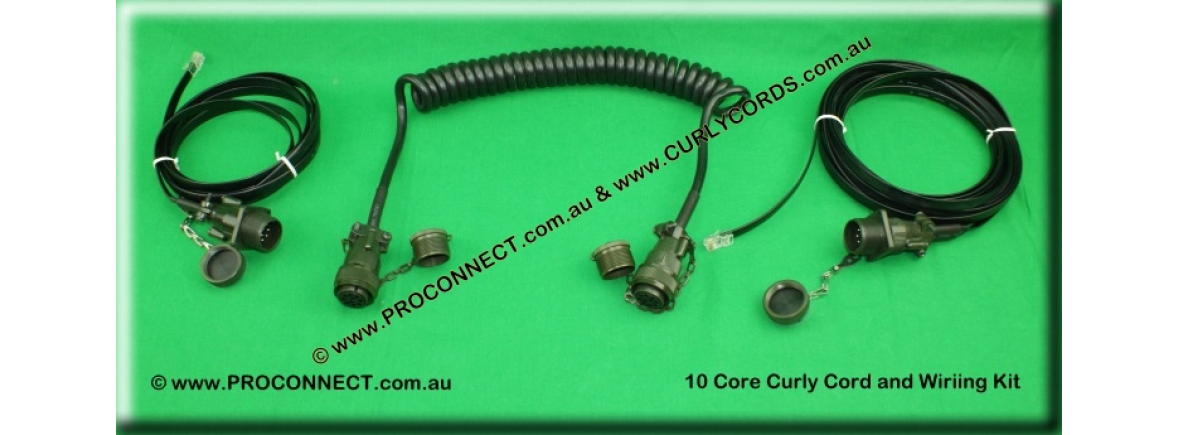 10 core mod curly cord set 1