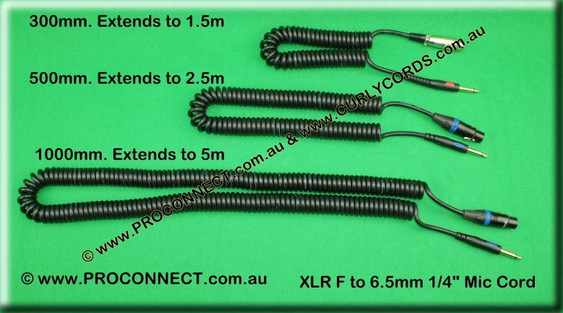 XLR to 1/4 microphone curly cord